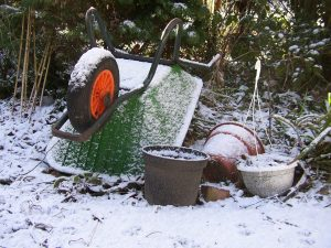 eco tuin in de winter
