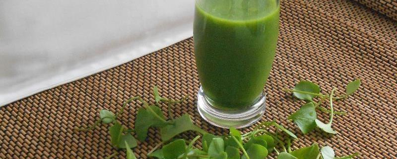 Groene Smoothie met winterpostelein - bladgroenten in de winter